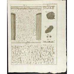 1777 - Murs de l'hôtel...