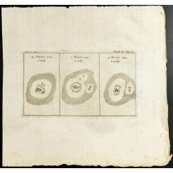 1777 - Taches solaires -...