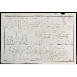 1850 - Cavalerie militaire