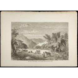 1860 - Forêt du Marghi -...