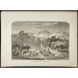 1860 - Vallée d'Auderaz -...