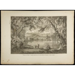 1860 - Île de Luçon -...