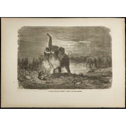 1860 - Chasseur surpris par...