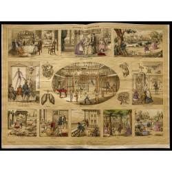 1853 - L'anatomie et...