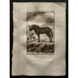 1799 - Le gnou ou niou