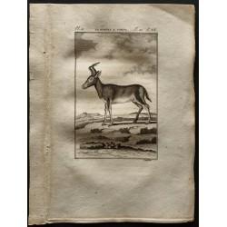 1799 - Le rubale
