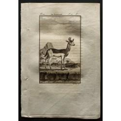 1799 - Le nanguer