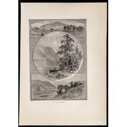 1880 - Delaware River