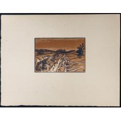 1916 - Terrains vagues