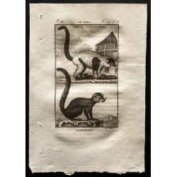 1799 - Le vari, le mongous