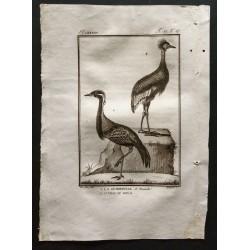 1801 - La demoiselle,...