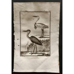 1801 - Le Héron, l'aigrette...