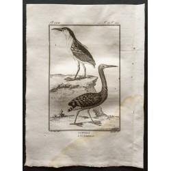 1801 - L'onoré, le...
