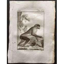 1800 - Le magot vu de coté...