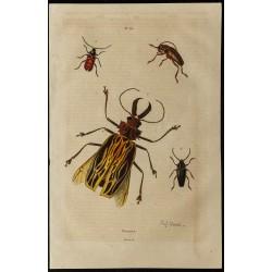 1839 - Vues de Priones