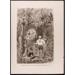 1880 - Lacharme dans la...