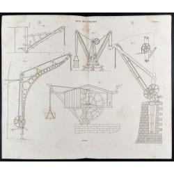 1852 - Nombreuses grues -...