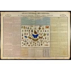 1837 - Histoire naturelle -...